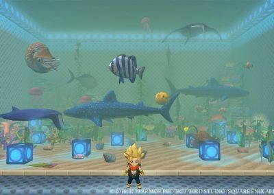 DQB - pack aquarium - aquarium perso